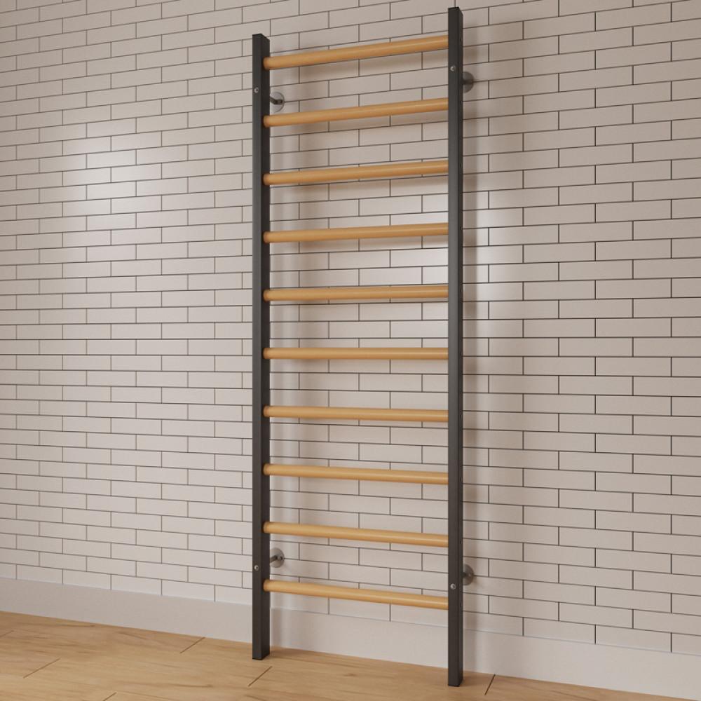 Стенка гимнастическая с металлическими боковинами 2400