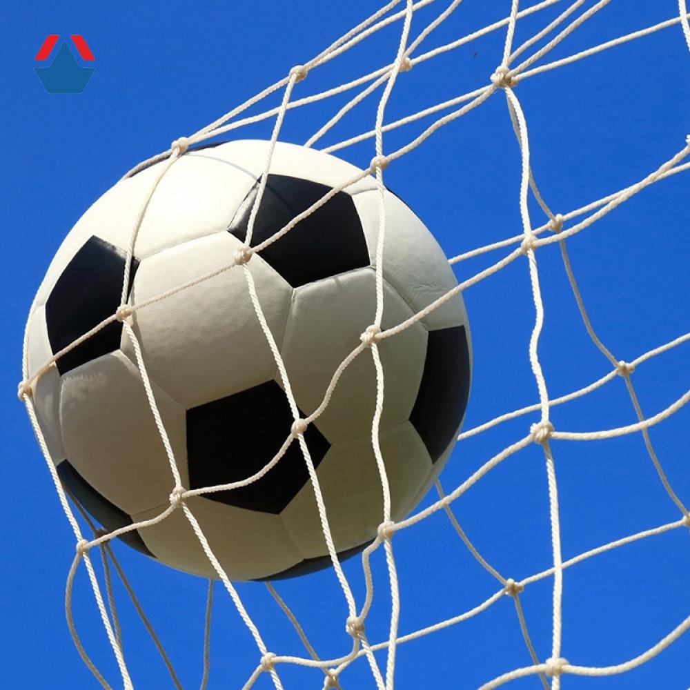 Сетка для футбольных ворот 5х2х1х1,5 м яч. 100х100 мм Ø 2,8