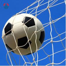 Сетка для футбольных ворот 5х2х1х1,5 м яч. 100х100 мм Ø 2,6