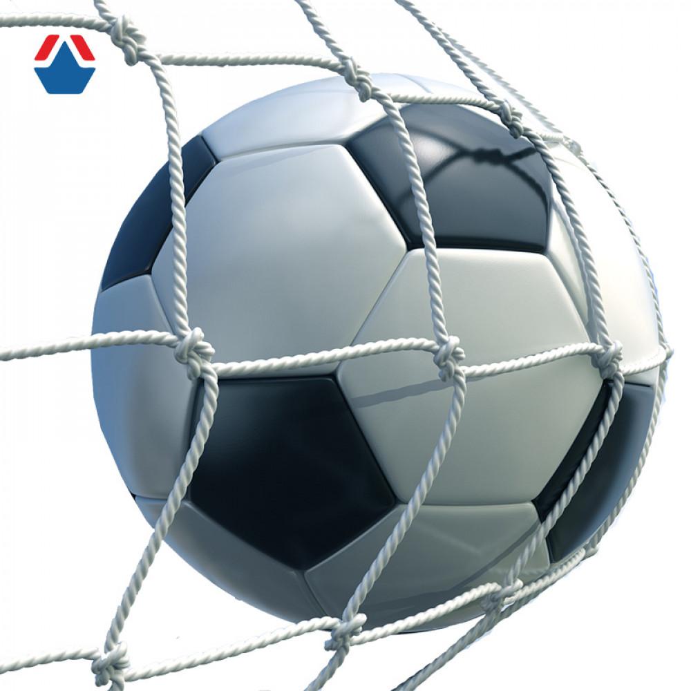 Сетка для футбольных ворот нить 3,1 (100х100) (7500х2500)